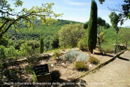 blog_provence_2017_jardin2